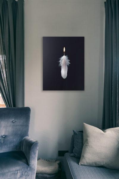 RIJK creatievestudio| Featherlight