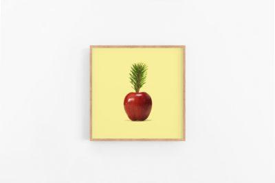Rijk creatieve studio-Pineapple