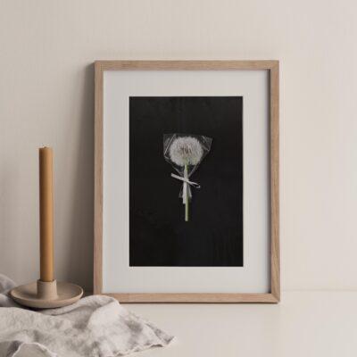 poster, print,canvasprint, interieur, kunst, kantoorkunst, woonkamerkunst